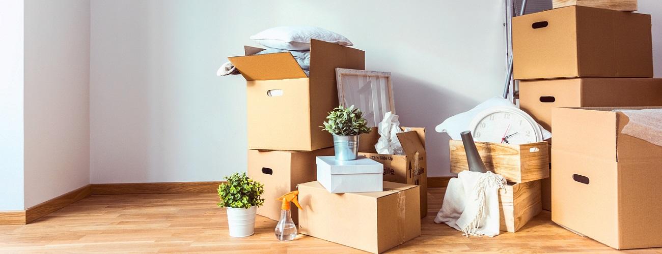 Umzug: Umzugskisten und Putzutensilien in einer Wohnung