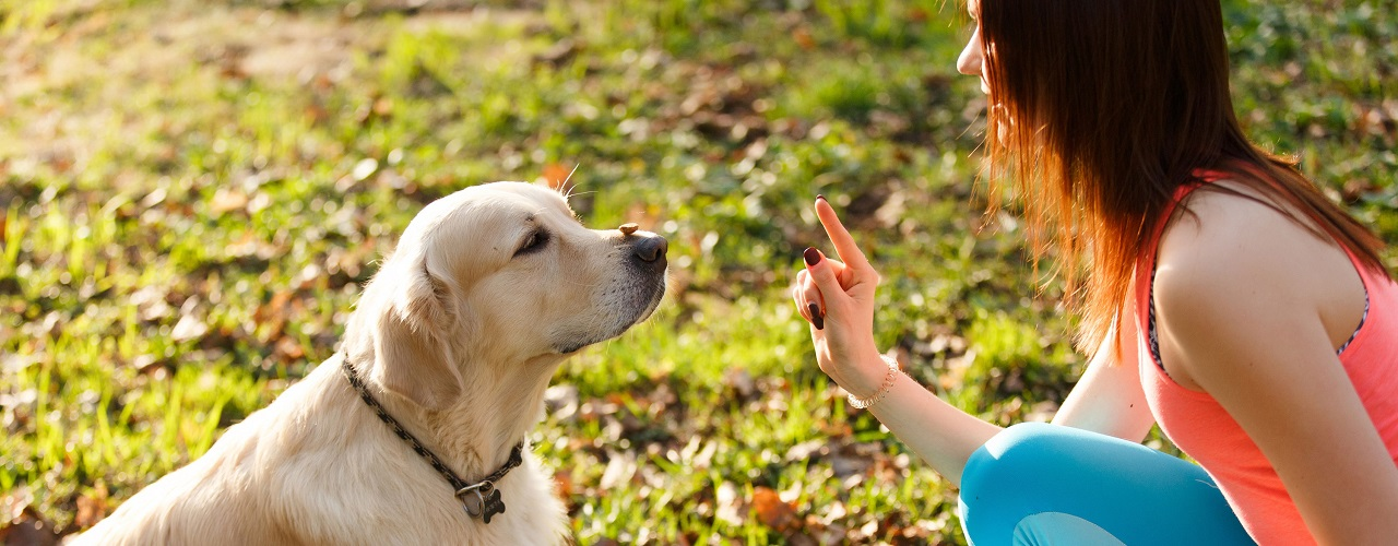 Von frau bekommt hund kind Laura Müller: