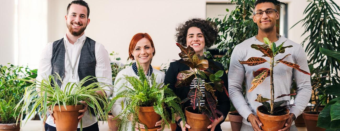 Kollegen mit Bueropflanzen in der Hand