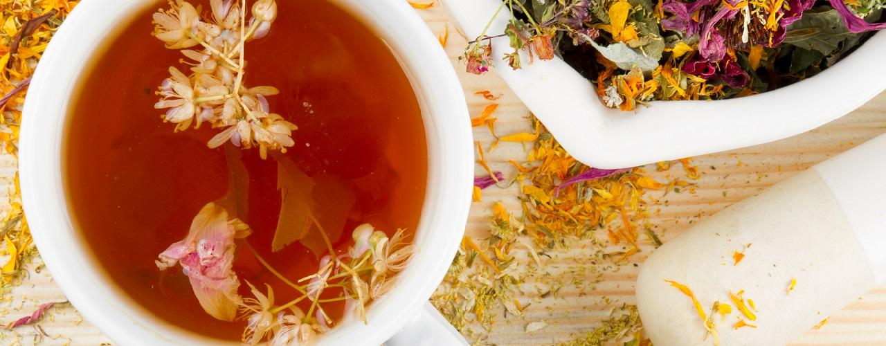 Eine Tasse Tee mit verschiedenen Heilpflanzen auf einem Tisch