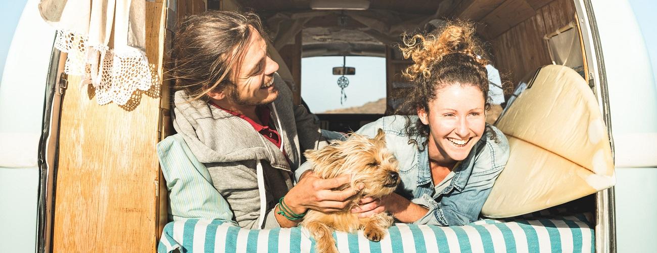 Junge Leute im Auto mit Hund
