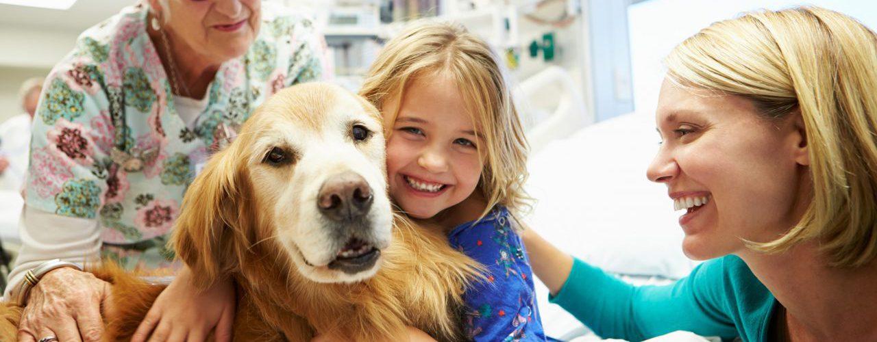 Junge Patientin mit Hund im Arztzimmer