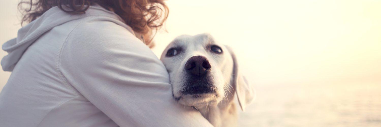 Krebserkrankung und Haustiere - Frau mit Hund