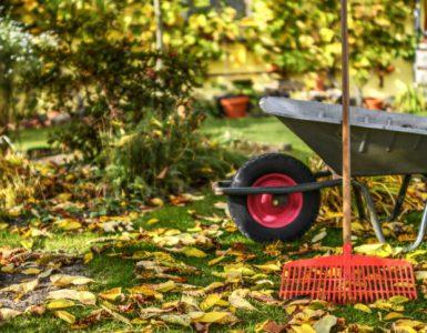 Schubkarre im herbstlichen Garten